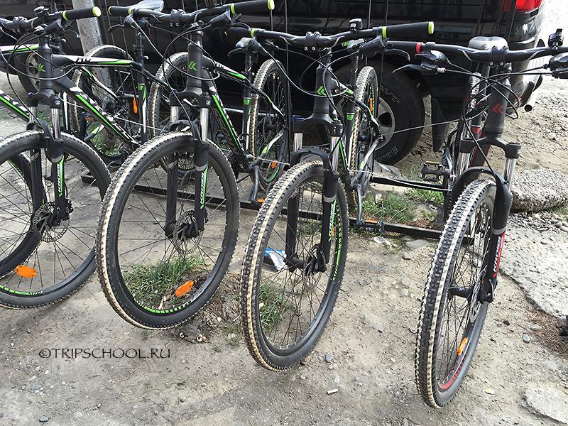 Прокат велосипедов Батуми